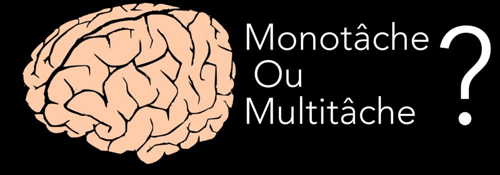 La loi du cerveau INCONTOURNABLE pour vos présentations PowerPoint